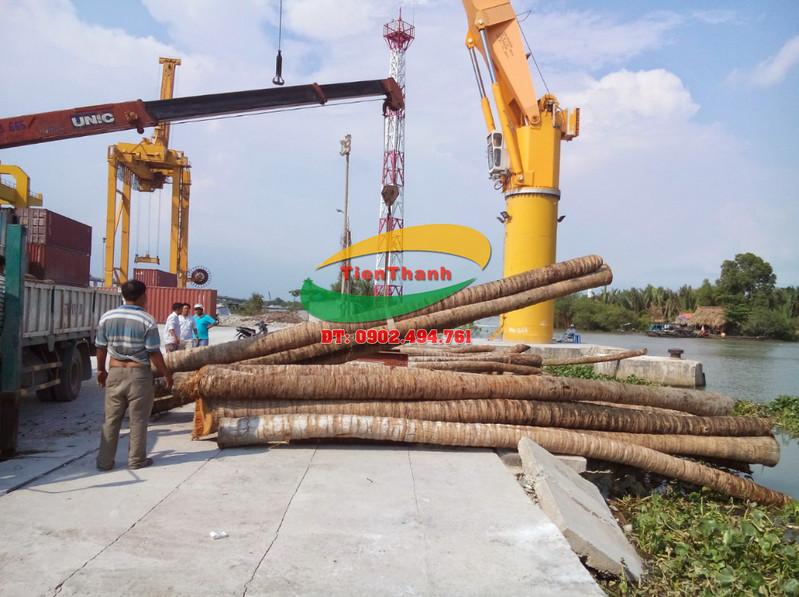 Chuyên Cung Cấp Cừ Dừa, Đóng Cừ Dừa, Bán Cừ dừa Giá Rẻ