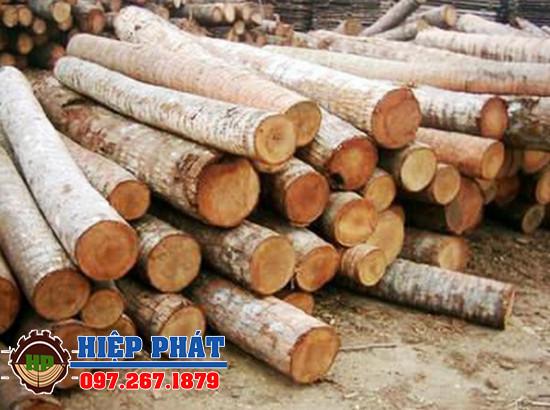 Hiệp Phát vựa cung cấp cừ dừa, gỗ cừ dừa lớn hàng đầu tại TPHCM